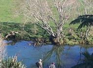 怀卡雷莫纳湖是新西兰旅游胜地之一